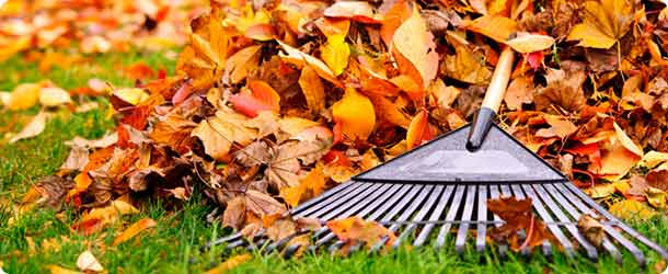 fall_maintenance_tips-2014